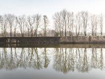 Изображение деревья и отражать на реке стоковая фотография rf