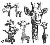 Иллюстрация руки вектора вычерченная силуэта жирафа иллюстрация штока