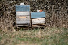 инвентарь держать пчелы, дома пчелы стоковая фотография rf