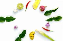 Ингредиент Тайской кухни для Том yum изолированного на белой предпосылке с космосом экземпляра стоковая фотография rf