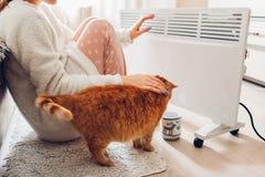 Используя подогреватель дома в зиме Женщина грея ее руки с котом Сезон топления стоковая фотография rf