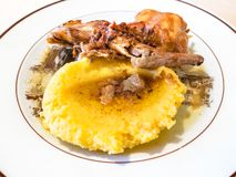 Итальянская кухня - местная полента с кроликом тушеного мяса стоковое изображение rf