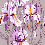 Linear seamless pattern with big spring flowers. Irises vector illustration