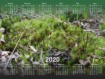 Календарь на 2020 иллюстрация штока