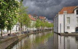 Канал с деревьями в Делфте, Голландии стоковые изображения