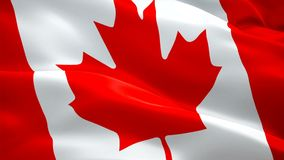 Канада плавно закрепляя петлей видео флага развевая в ветре Реалистическая канадская предпосылка флага Крупный план 1080p полное  иллюстрация вектора