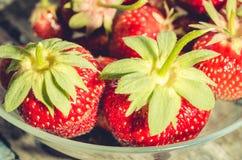 Клубника Свежие ягоды клубники, конца вверх по взгляду /Top Клубника внутри к стеклянному шару стоковые изображения rf