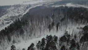Красивый вид с воздуха в лесе во время зимы на России сток-видео