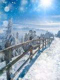 Красивый ландшафт страны чудес зимы Предпосылка рождества сценарная со светами снега и bokeh мягкими падая над деревянной загород стоковые фото