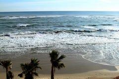 Красивый пляж с пальмами на берегах Средиземного моря, Испании стоковые фотографии rf