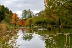 Красивый пруд в дендропарке Aubonne, Швейцарии в сезоне осени стоковые фото