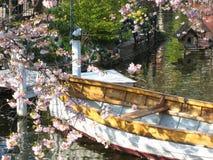 Красиво взгляд деревянной шлюпки в Копенгагене в Дании окружил морем цветков ‹â€ ‹â€ в небольшом озере стоковое изображение rf