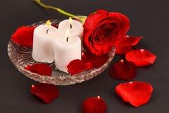 красная роза, свечи, лепестки красной розы на черной предпосылке стоковые изображения