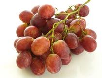 Красные виноградины изысканное обслуживание, виноделие стоковое фото rf