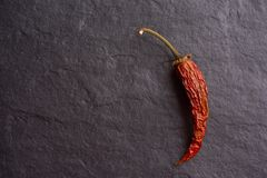 Красные высушенные перцы на темной предпосылке стоковые фотографии rf