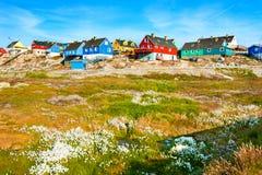 Красочные дома на утесах в Ilulissat, Гренландии стоковая фотография rf