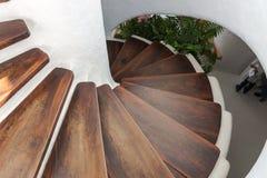 Круглые лестницы с темными коричневыми шагами стоковая фотография rf