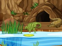 Крокодил на болоте иллюстрация штока