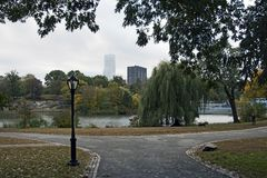 Колумбийский университет в городе Нью-Йорка стоковая фотография rf