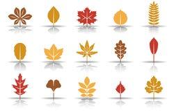 Комплект значка листьев осени бесплатная иллюстрация