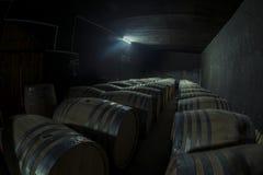конгяк погреба фланкирует дуб там wine стоковая фотография