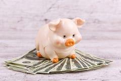 Конец-вверх на копилке серой предпосылки piggy с деньгами стоковые изображения