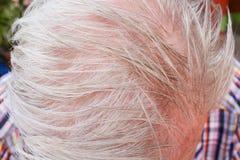 Конец вверх по голове людей идя к серым волосам стоковая фотография rf