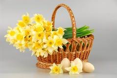 Корзина Narcissus, пасхальные яйца в корзине, женщины цветка narcissus весны желтые или день матерей стоковая фотография rf