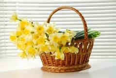 Корзина Narcissus, пасха, женщины цветка narcissus весны желтые или день матерей стоковые фотографии rf