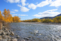 Колымская река. Kolyma River unspoiled nature, secret places of our planet Royalty Free Stock Image