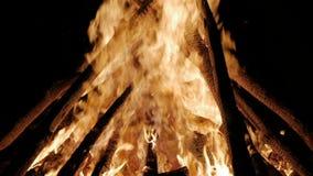 Лагерный костер в ноче Гореть вносит дальше поднимающее вверх в журнал оранжевых пламен близкое видеоматериал