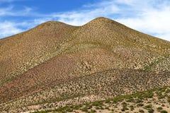 Ландшафты пустыни Atacama, Чили стоковые изображения