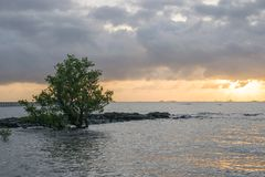 Ландшафт природы шлюпок на пляже на заходе солнца стоковые изображения