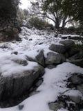 Ландшафт покрытый снегом на держателе Baldy Калифорния стоковые изображения rf
