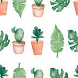 Ладонь акварели тропическая, monstera выходит с кактусом в картину баков и succulents безшовную Покрашенная рука Троповое временя иллюстрация вектора