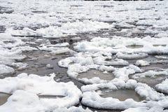 Лед блинчика на воде озера стоковое фото