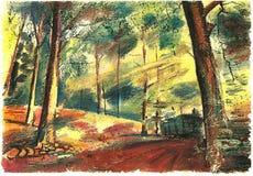 Лес лета, солнце светит через деревья иллюстрация вектора
