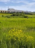 summer meadow with a railway bridge stock image