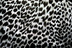 Леопард, ягуар Картина меха на ткани Цвет печати и черно-белое стоковые изображения
