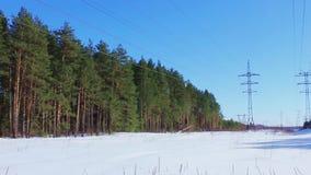 2 линии электропередач в лесе зимы видеоматериал