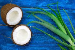 Листья на голубом деревянном столе, естественные ингредиенты зеленого цвета vera кокоса и алоэ косметик стоковые фото