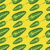 листья тропические бесплатная иллюстрация
