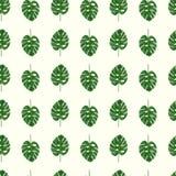листья тропические иллюстрация штока