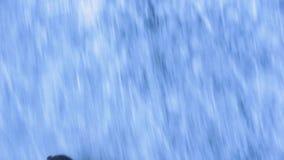 льдед предпосылки красивейший холодный идя изолировал светлую естественную катаясь на коньках белую женщину конец вверх сток-видео