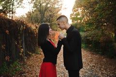 Любовь, отношения, сезон и концепция людей - конец вверх счастливого молодого outdoors пар в парке осени стоковые фотографии rf