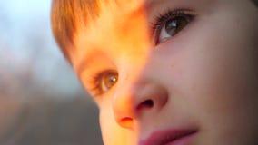 Любопытная сторона мальчика Положительные эмоции молодого мальчика Путешествовать концепцией поезда Глаза ребенк с серьезной стор сток-видео
