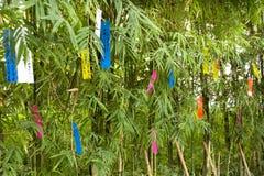 Люди путешественников присоединиться и пишущ желания на бумаге и вид на бамбуковом дереве в фестивале Tanabata или звезды японско стоковое фото