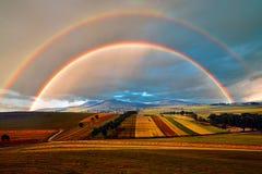 Луг и радуга стоковая фотография