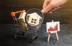 Лупа смотрит вагонетку супермаркета с домами и стойку с диаграммой статистики Растущий спрос стоковые изображения