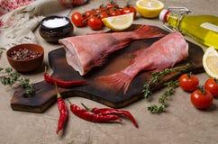 Луциан рыб сырцовый стоковое фото